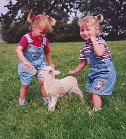 girls and lambs 003.jpg (14119 Byte)